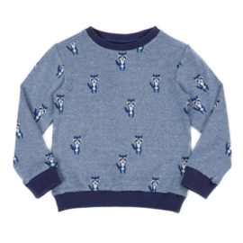 Lily Balou * WINTER 2019 KIDS * Mika Sweatshirt Raccoon