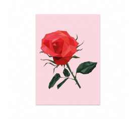 Studio Stationery Kaart Rose