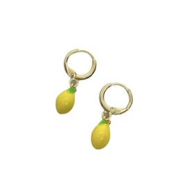 Oorbellen ~ Earrings