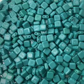 Persianer Turquoise - 20 stuks