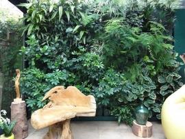 Plantenwand  - GROEN - enkele bak voor 3 planten