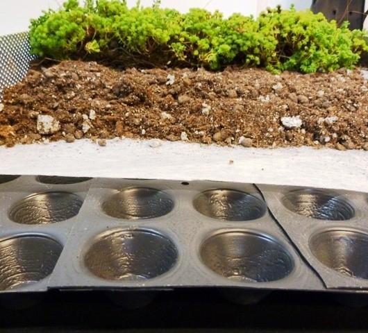 Fytonop drainageplaat