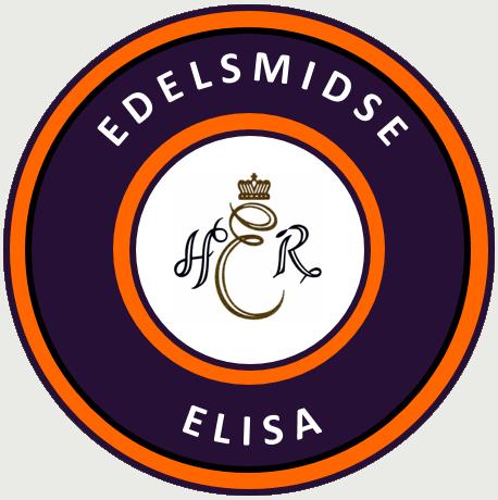 Edelsmidse Elisa, Opleiding Goud- en Zilversmende, Emmen, voor workshops en cursussen, beginners en ervaren goudsmeden
