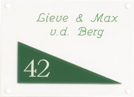 Gravoglas naambord 20x15 cm 4009