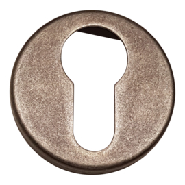 Cilinderplaatje convex  Natural steel