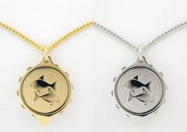 S.O.S. talisman sterrenbeeld hanger double of staal Vissen