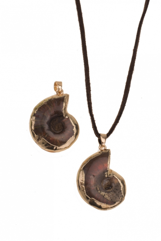 Shell Ammonite Pendant