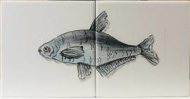 Wandtegeltableau Tilapia / serie visjes (2 x 15x15cm)