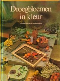 Droogbloemen in kleur