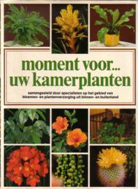 Moment voor ... uw kamerplanten