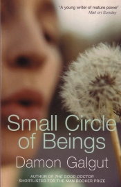 Damon Galgut - Small Circle of Beings