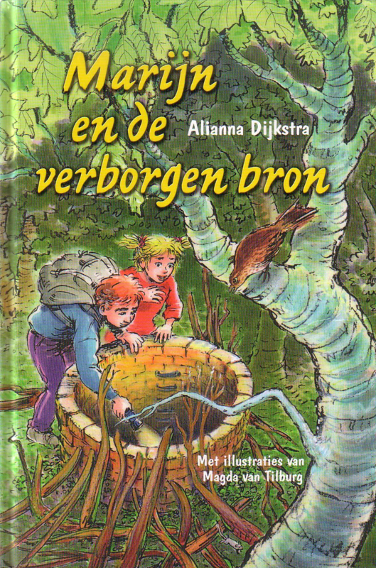 Alianna Dijkstra - Marijn en de verborgen bron