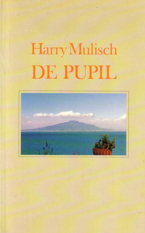 Harry Mulisch - De pupil