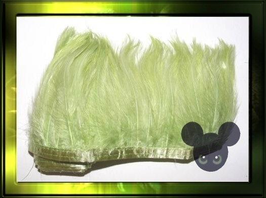 veren op band 50cm/ pastel groen