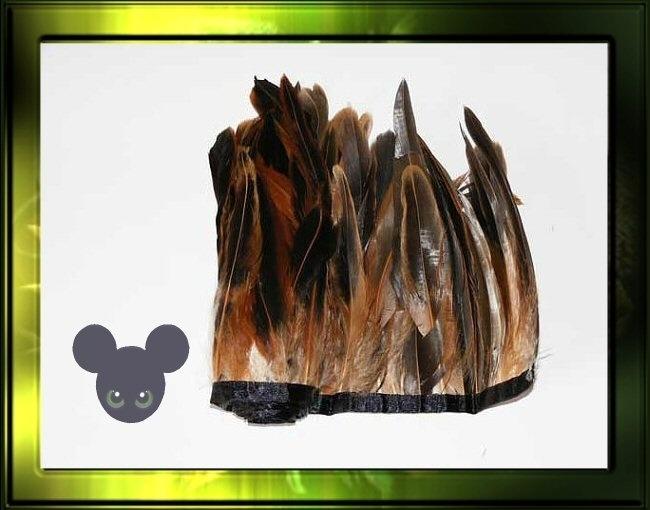 veren op band 50cm / bruin naturel