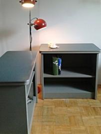 Gispen vintage kasten / Gispen vintage cupboards [sold]