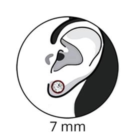 zilveren turkoois oorbellen