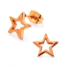steel rose gold star earrings