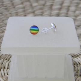 Zilveren regenboog oorknopjes