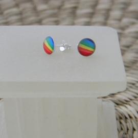 Zilveren regenboog oorbellen