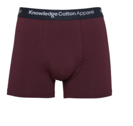KCA || MAPLE 1 pack underwear: fig