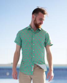 Brava Fabrics || FIG DREAMS shirt: green