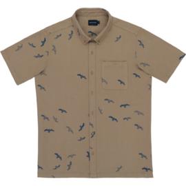 Shirt SEABIRDS; Tabacco