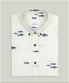 BRAVA   RIVER shirt: Fish off white