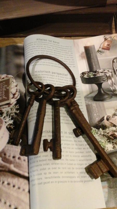 IJzeren sleutelbos