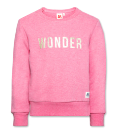 american outfitters sweater wonder