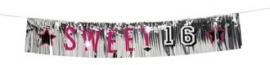 Banner Franje sweet 16
