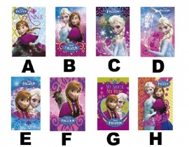 Disney Frozen A7 notitieboekje