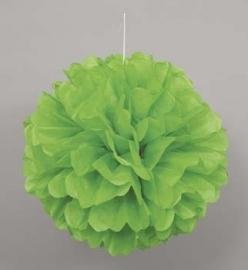 Hangdecoratie Pom Pom groen