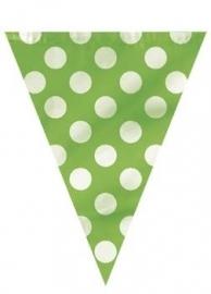 Vlaggenlijn Polka Dots Groen