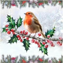 Chrystel Card Kit-Diamand Painting Christmas Robin-Craft Buddy- Multi Color
