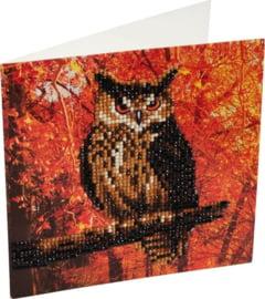 Chrystel Card Kit-Diamand Painting Autumn Owl-Craft Buddy- Multi Color