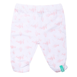 Baby Girls Basic Pants Elastic NB- Beebielove- wit