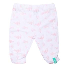 Beebielove-Baby Girls Basic Pants Elastic NB-White