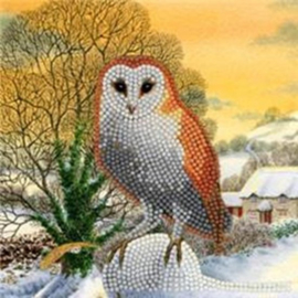 Chrystel Card Kit-Diamand Painting Winter Owl-Craft Buddy- Multi Color