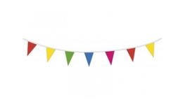 Vlaggenlijn 10 meter-C-assortiment kleuren