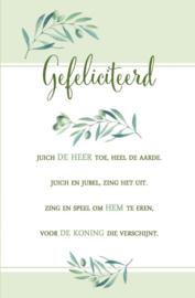 Baaij Light Cards-Wenskaart gefeliciteerd-White-green