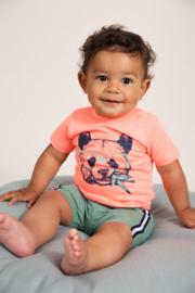 Dirkje-Baby Boys T-shirt ss -Neon coral