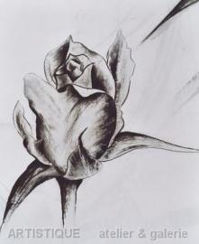 Bloeiende roos 1, incl passepartout en lijst