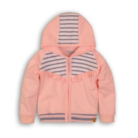Baby Girls  cardigan-Dirkje-Light pink+light blue stripe