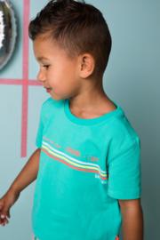 Bampidano Junior Boys short sleeve T-shirt Enzo plain with print CACTUS-Green