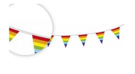Vlaggenlijn 10 meter Regenboog-C-assortiment kleuren