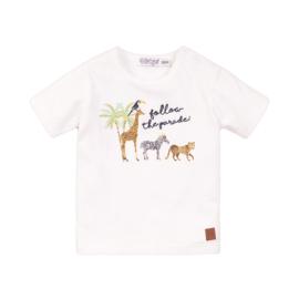Dirkje-Baby Boys T-shirt ss -White