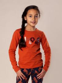 DJ Dutch Jeans-Girls T-shirt ls-Rusty brown