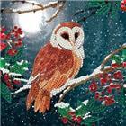 Chrystel Card Kit-Diamand Painting Barn Owl-Craft Buddy- Multi Color