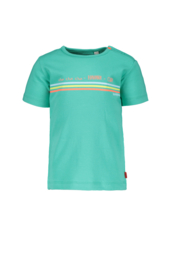 Bampidano- Baby Boys short sleeve T-shirt Enzo plain with print CACTUS-Green